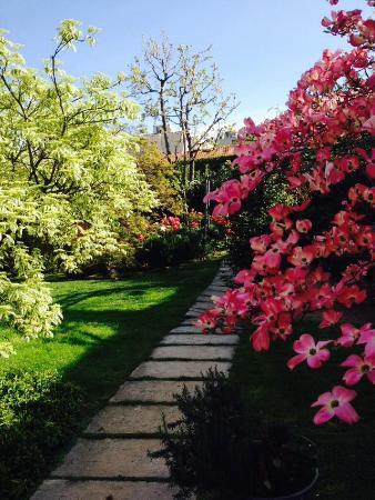 Bombyx Bed & Breakfast : Primavera- Spring
