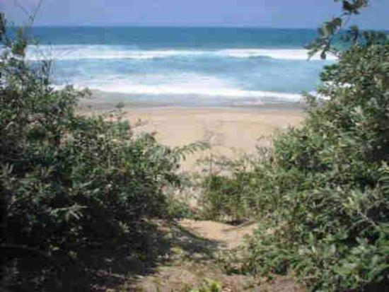 The Merry Crab Beach Lodge: Pristine beach and inviting ocean at the end of short forest path...