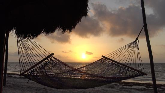 Hotel Maya Luna: Beach at dawn with hammock