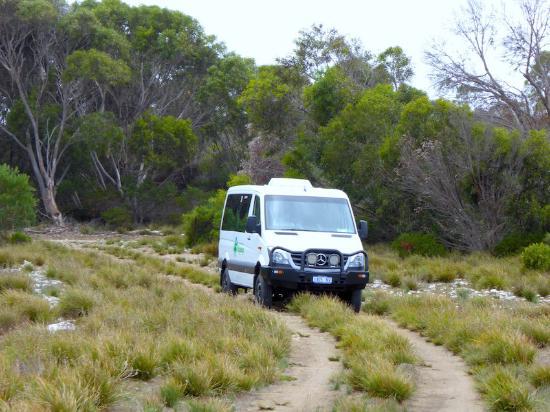 Kingscote, Australia: Our bus