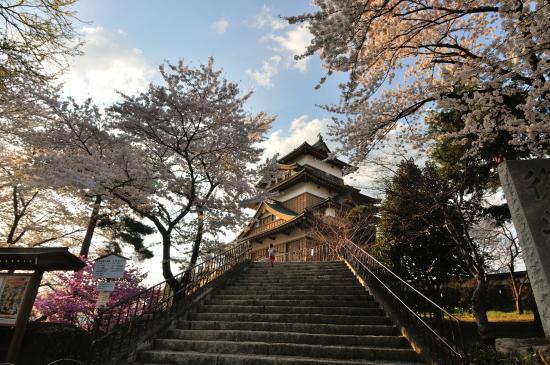Takashima Castle: 天守閣に登る方は結構いました。