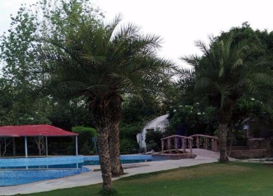 Bilde fra Botanix Nature Resort