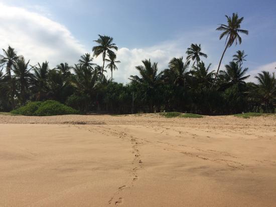 Kahandamodara, Σρι Λάνκα: Beach