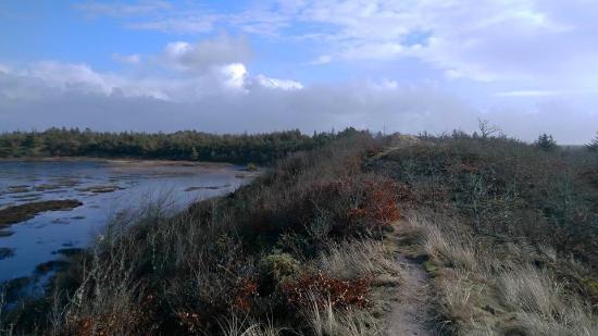 Thisted, Dinamarca: Den gule sti (vandresti), der starter syd for Stenbjerg.