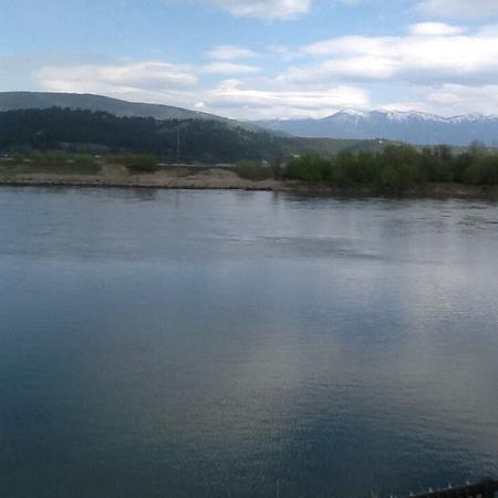 Bonners Ferry, Айдахо: This is what we seen every time we looked outside from our room!