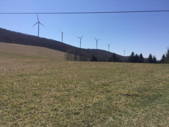Savage River Lodge: Wind turbines doing their thing on the hillside nearby