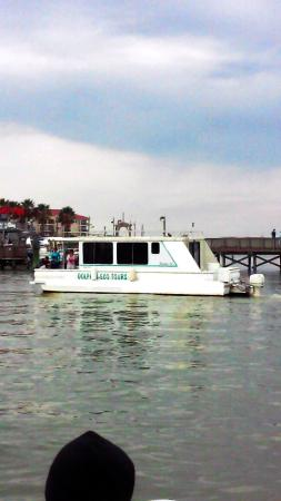 Fins to Feathers: The Laguna Skimmer Houseboat