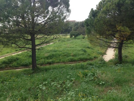 Parco Archeologico delle Mura Greche