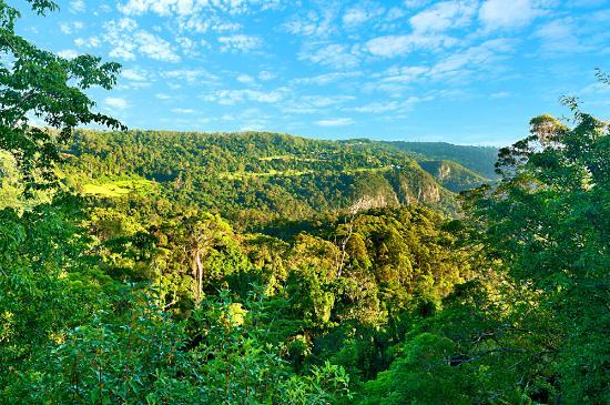 Mount Tamborine, Australia: Cliff views