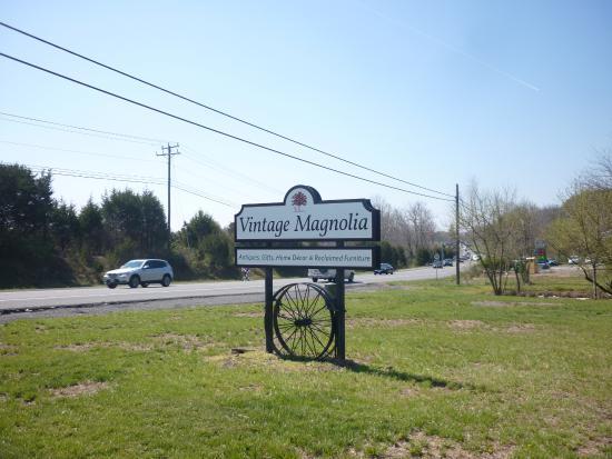 Leesburg, VA: Vintage Magnolia