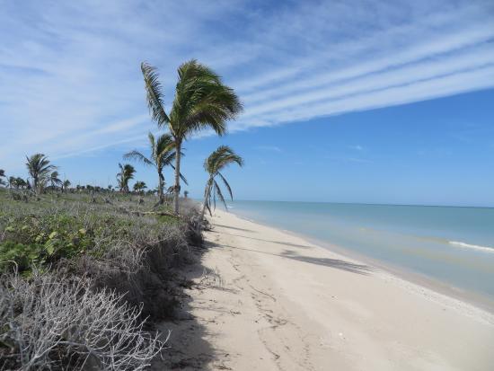 Hotel Reef Yucatan All Inclusive Convention Center Photo
