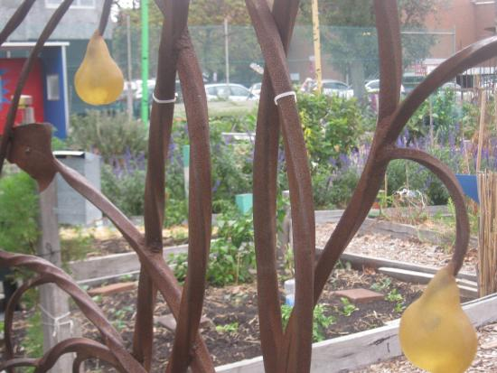 Veg Out Community Gardens St Kilda