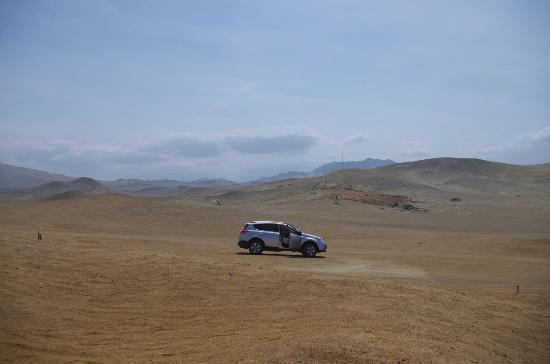 Huarmey, Peru: IMGP2159_large.jpg