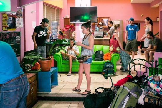 Green Monkey Hostel
