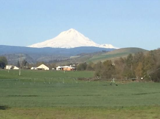 Dufur, Oregón: View of Mt Hood in April from 2nd floor Room #1