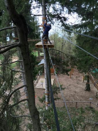 Selvino Adventure Park: IMG-20160416-WA0032_large.jpg