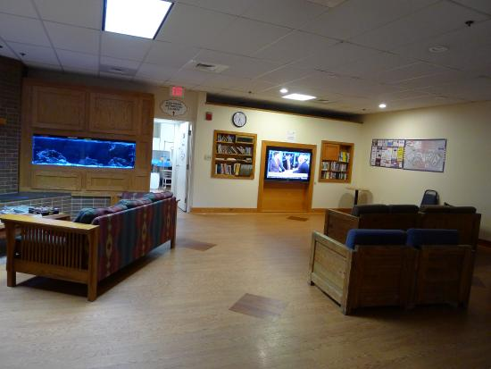 Колледж-Парк, Мэриленд: Game Room