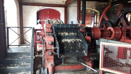 Saint Peter Parish, Barbados: Steam engine operated cane crushing