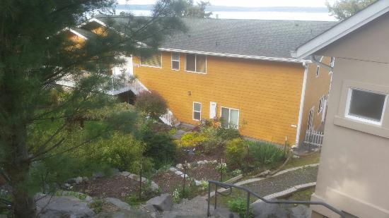 Camano Island, واشنطن: 20160416_090322_large.jpg