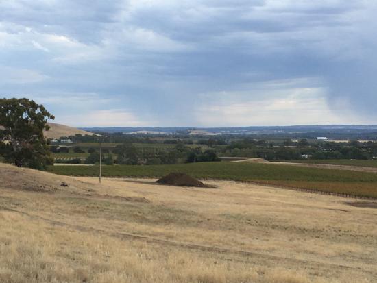 Blickinstal Barossa Valley Retreat: view from the Pergola towards Rockford Winery