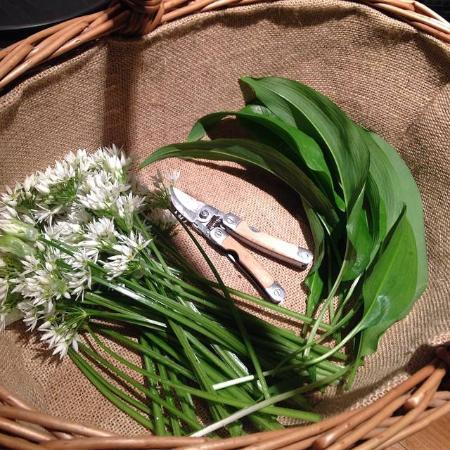 Inverkip, UK: Wild flowers for our tables