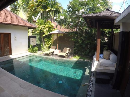 Disini Luxury Spa Villas: the pool
