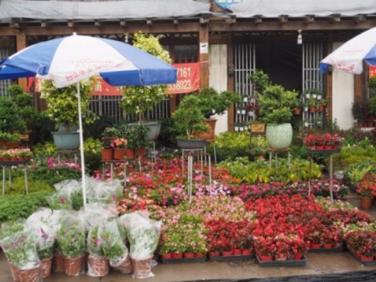 Longhai, จีน: Shops
