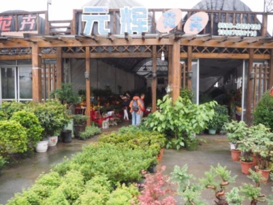 Longhai, China: Shops
