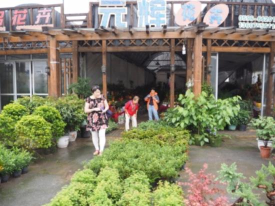 Longhai, Kina: Shops