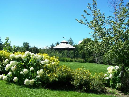 Parc-des-Ancetres