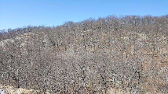 Ringwood, NJ: A view of Buck Mountain.