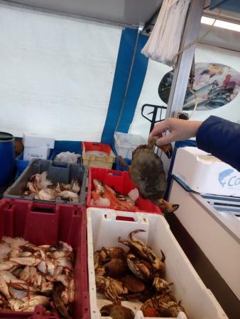 Weekmarkt Enschede