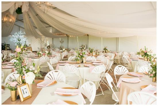 Amelia Court House, VA: Tent with tables and beautiful hanging tulle