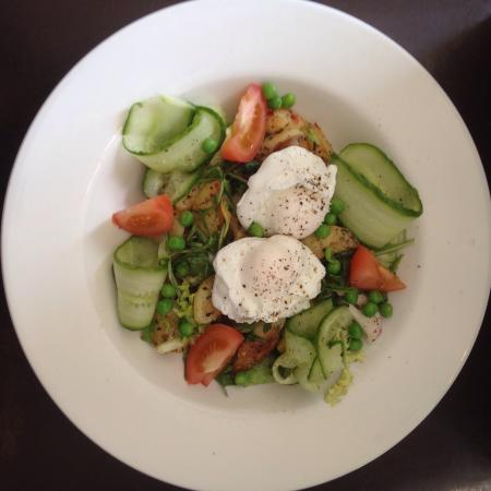 Warm poached egg salad
