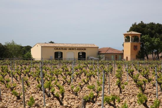 Chateauneuf du pape tourism and travel best of - Office de tourisme chateauneuf du pape ...