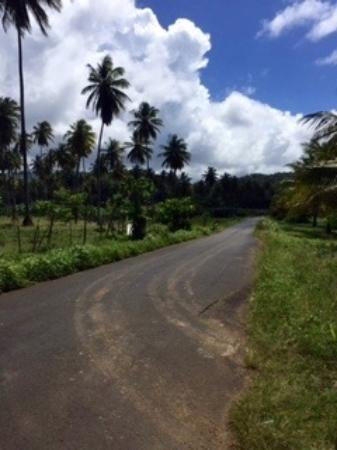 Driving in Dominica - Close to Calibishie