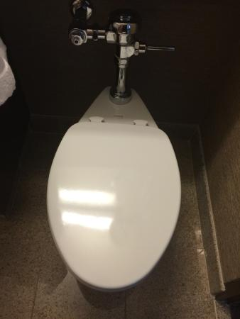 Commercial grade, very loud flushing toilet. - Picture of Sheraton ...