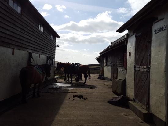 Boscastle, UK: Tredole Stables