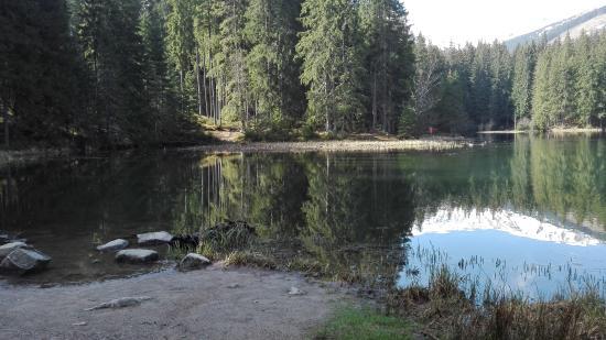 Demanovska Dolina ภาพถ่าย
