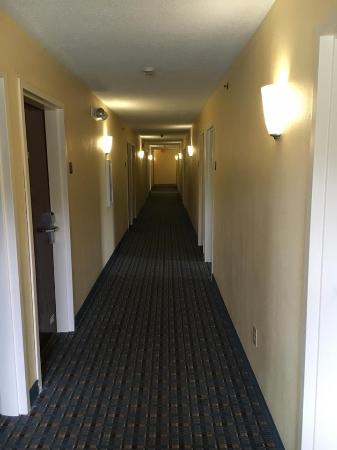 Calcium, NY: New Hallways