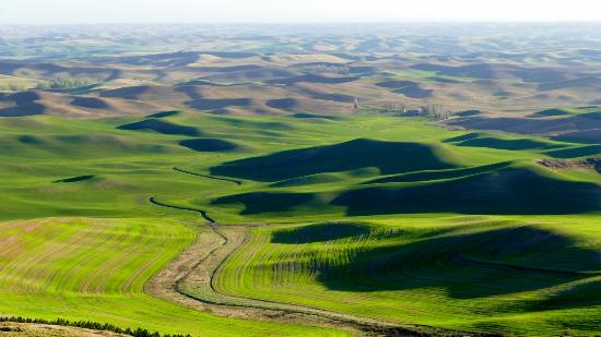 Colfax, WA: View from Steptoe Butte State Park