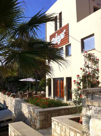 Pelagos Holidays Apartments : The office and the parking area