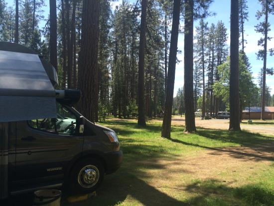 Nevada County Fairgrounds Camping Photo