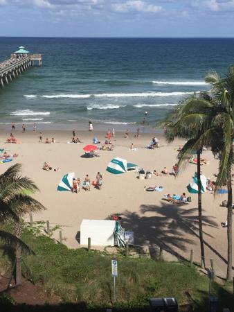 Wyndham Deerfield Beach Resort: Daytime view from Room 503