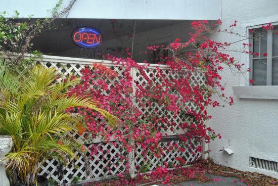 DeLand, FL: Restaurant entrance is in the back