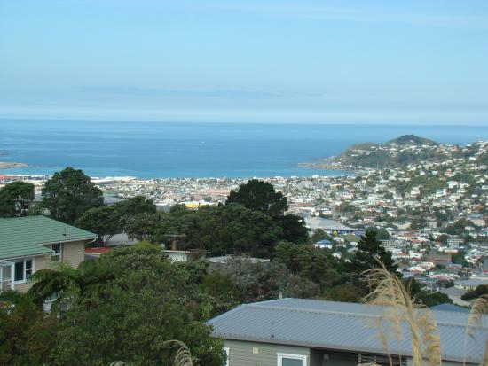 Homestay at Evans Bay: View from the area