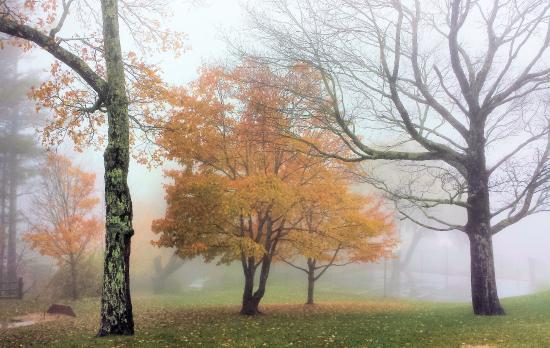 A very foggy day in Blowing Rock
