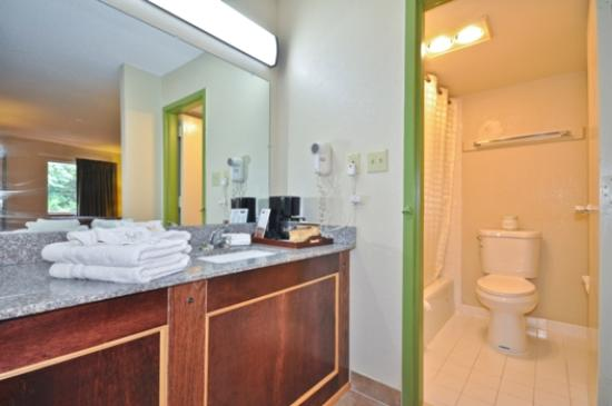 Country Hearth Inn & Suites Atlanta / Marietta and Banquet Hall: Deluxe Room - Granite Counter