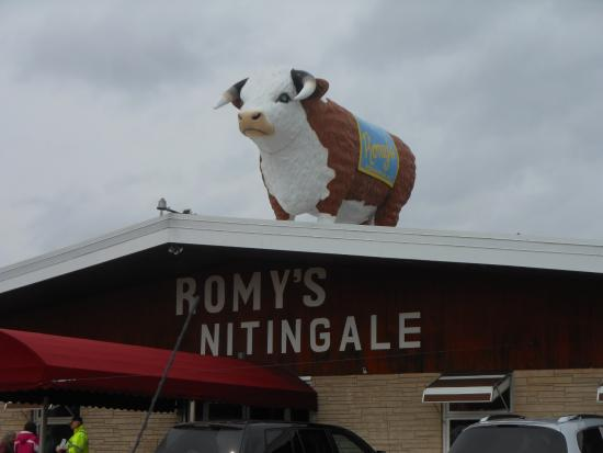 Black Creek, WI: Romy's Cow