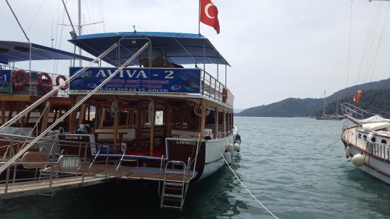 Aviva 2 Gunluk Tur Teknesi